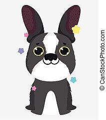 cute dog breed french bulldog domestic cartoon animal, pets