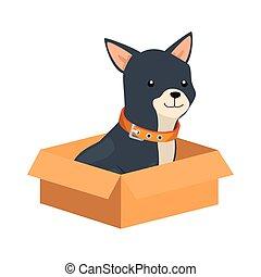 cute dog in box carton isolated icon