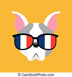 cute dog pet with flag france glasses heart background