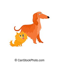 Cute, funny dog characters - Afghan hound and Pomeranian spitz