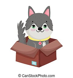 dog in box with food package canine cartoon pets