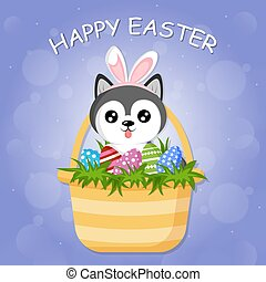 Cute little dog husky with bunny ears is sitting in the Easter basket, full of colorful egg