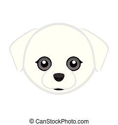 Cute maltese dog avatar