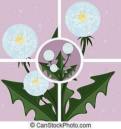Dandelion abstract background Vector