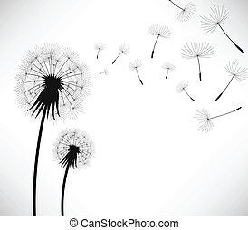 2 dandelion being blown by wind.