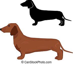 Decorative contour portrait of standing in profile dachshund