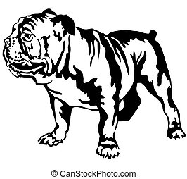 Decorative portrait of standing in profile English bulldog, vector isolated illustration in black color on white background