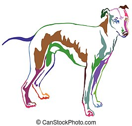 Decorative standing portrait of dog Whippet, vector illustration in rainbow colors