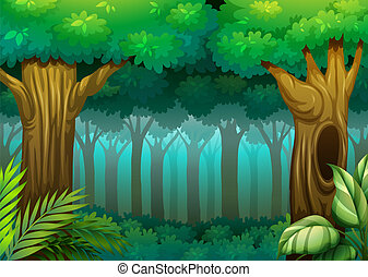 Illustration of a deep forest scene