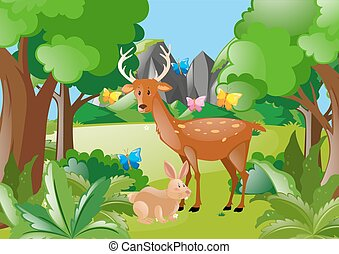 Deer and rabbit in the woods