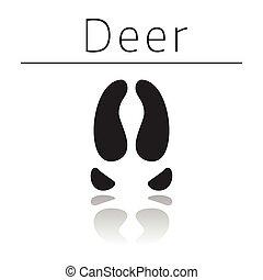 Deer animal track