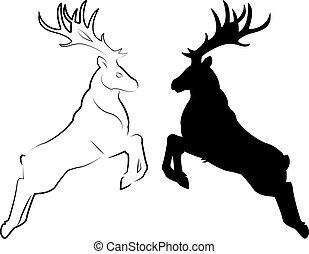 Deer as line-drawing and as shape