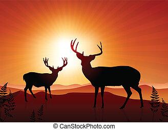 Deer on sunset background