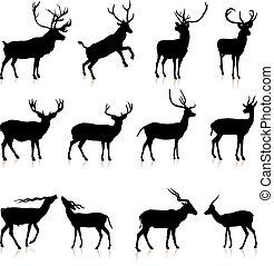 Deer Silhouette Collection Original Vector Illustration