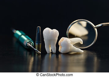Real Human Wisdom teeth, titanium implant and Dental instruments
