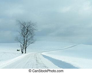 Desolate Winter Road