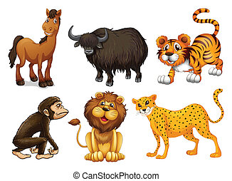 Illustration of the different kinds of four-legged animals on a white background