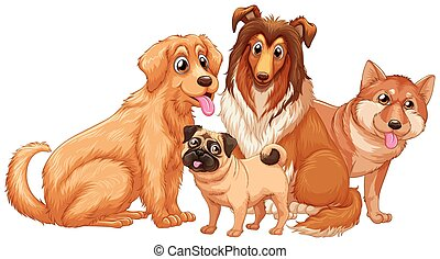 Different type of cute puppy dogs