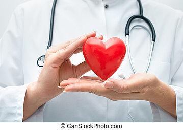 Doctor holding heart