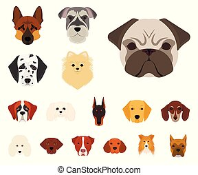 Dog breeds cartoon icons in set collection for design. Muzzle of a dog vector symbol stock illustration.