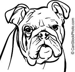 Dog bulldog. outlines Illustration.