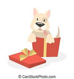 Dog in box.