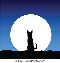 dog on the moon