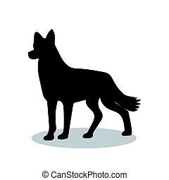 Dog pet black silhouette animal