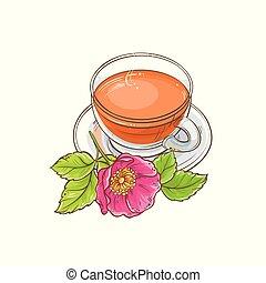 dog rose tea illustration