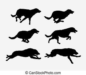 Dog running pet animal silhouette