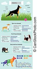 Dogs Breed Infographics