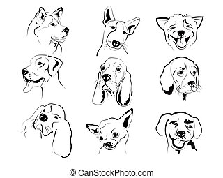 Set of different dogs friendly graphic faces sketches.