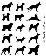 Vector illustration of various dog race silhouettes