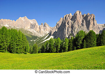 Dolomite peaks, Rosengarten, Val di Fassa, Italy Alps