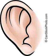 An illustration of a human ear body part