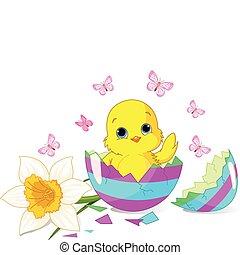 Easter chick sitting in the broken Easter Egg.