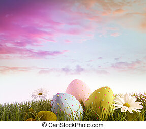 Eggs with daisies in grass with rainbow color sky