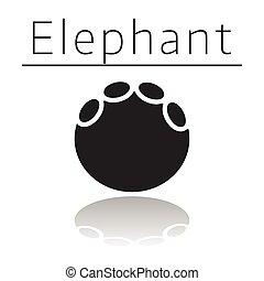 Elephant animal track