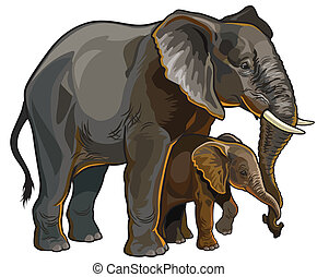 african elephant with baby side view illustration isolated on white background