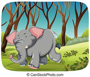 Elephant running in the woods