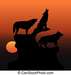 Evening illustration, three wolves on a mountain, howling with head up, silhouette on an orange sunset,