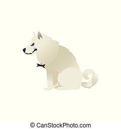 Evil sitting white fluffy dog isolated on white background.