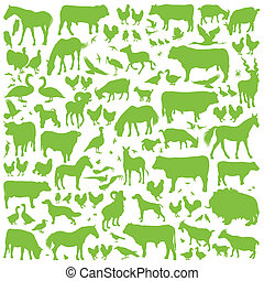 Farm animals detailed silhouettes background vector