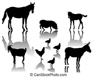 farm animals with shadows and white background