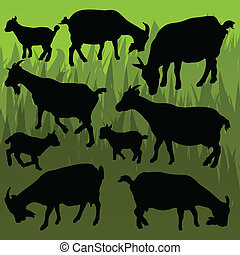Farm dairy goats detailed silhouettes illustration collection background vector
