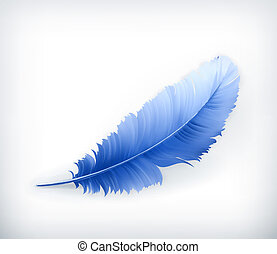 Feather, vector