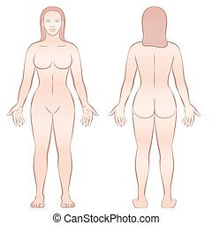 Female body - front view and back view.