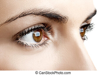 Close-up portrait of a beautiful female eyes