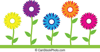 Five Colorful Flowers in a Row