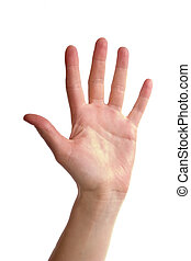 An adult female hand holding up five fingers spread apart. Image includes clipping path.